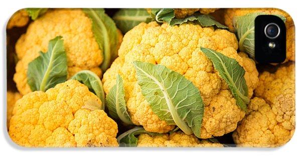 Yellow Cauliflower IPhone 5 Case