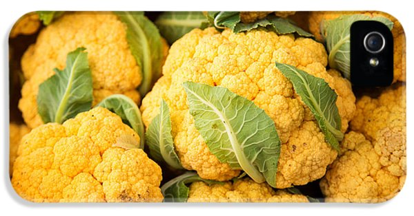 Yellow Cauliflower IPhone 5 Case by Rebecca Cozart