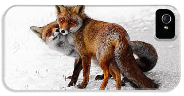 Yin Yang _ Red Fox Love IPhone 5 Case by Roeselien Raimond