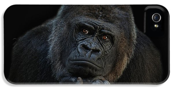 You Ain T Seen Nothing Yet IPhone 5 Case by Joachim G Pinkawa