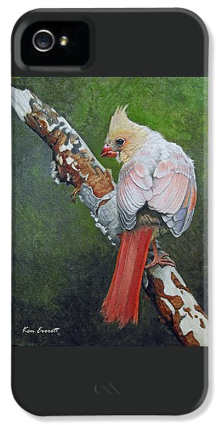 Young Cardinal  IPhone 5 Case