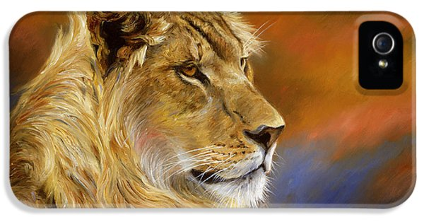 Young Lion IPhone 5 / 5s Case by Lucie Bilodeau