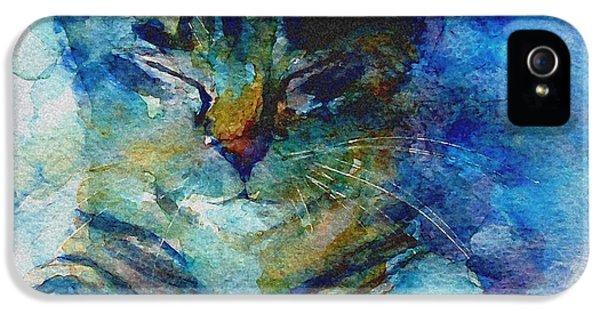 Cat iPhone 5 Case - You've Got A Friend by Paul Lovering