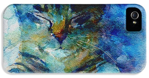 You've Got A Friend IPhone 5 Case by Paul Lovering