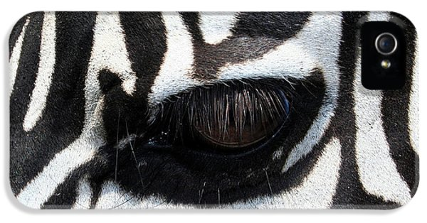 Zebra Eye IPhone 5 Case