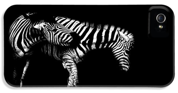 Zebra Stripes IPhone 5 Case by Martin Newman