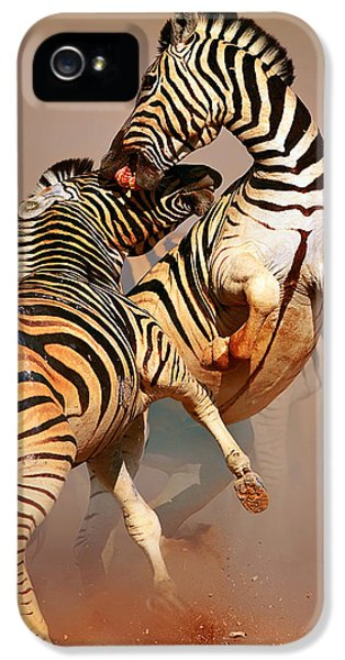 Zebras Fighting IPhone 5 Case by Johan Swanepoel