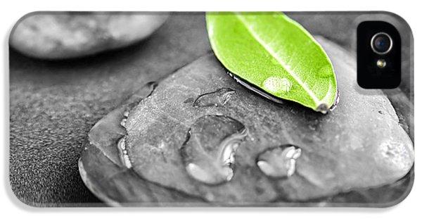 Zen Stones IPhone 5 Case by Elena Elisseeva