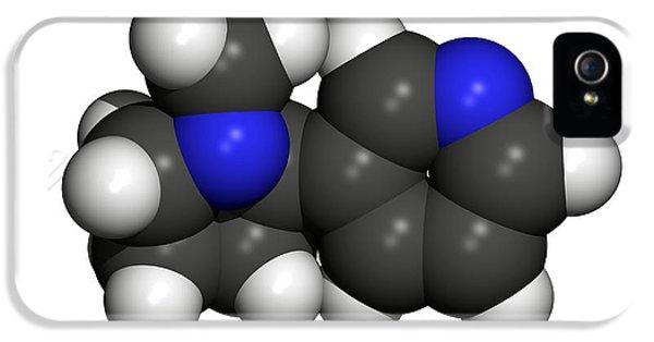 Nicotine Molecule IPhone 5 Case by Friedrich Saurer
