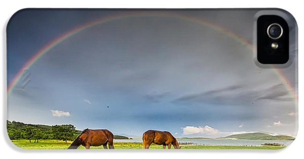 Rainbow Horses IPhone 5 Case by Evgeni Dinev