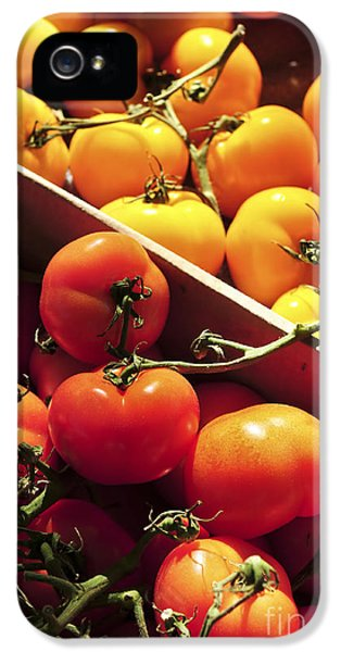 Tomatoes On The Market IPhone 5 Case by Elena Elisseeva