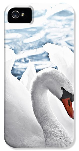 White Swan On Water IPhone 5 Case by Elena Elisseeva