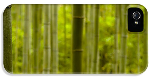 Mystical Bamboo IPhone 5 Case