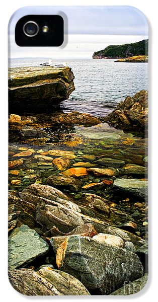 Atlantic Coast In Newfoundland IPhone 5 Case by Elena Elisseeva