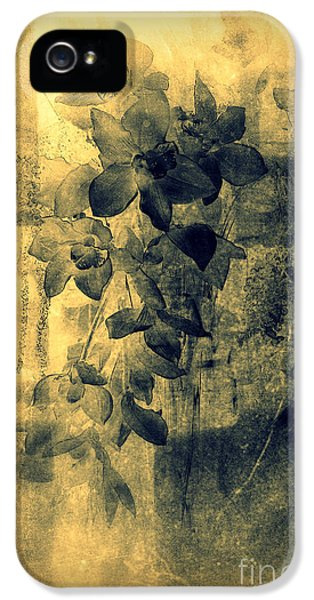 A Medley Of Orchids IPhone 5 Case by Susanne Van Hulst
