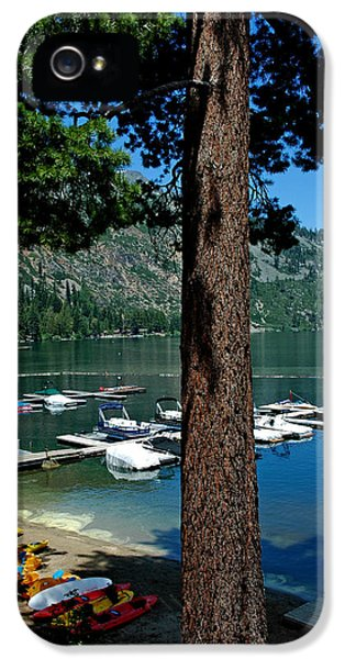 A Trees View Of Fallen Leaf Lake IPhone 5 Case