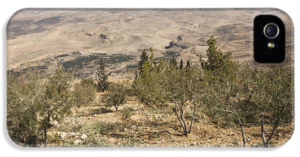A View Of Olive Trees And Moses IPhone 5 Case