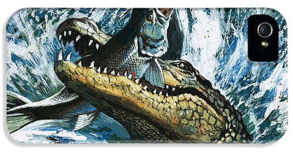 Alligator Eating Fish IPhone 5 / 5s Case by English School