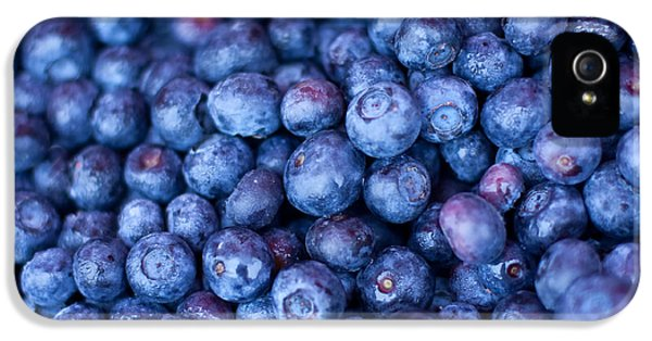 Blueberries IPhone 5 Case by Tanya Harrison