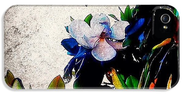 Edit iPhone 5 Case - Canvas Magnolia by Mari Posa