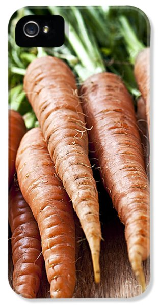 Carrot iPhone 5 Case - Carrots by Elena Elisseeva