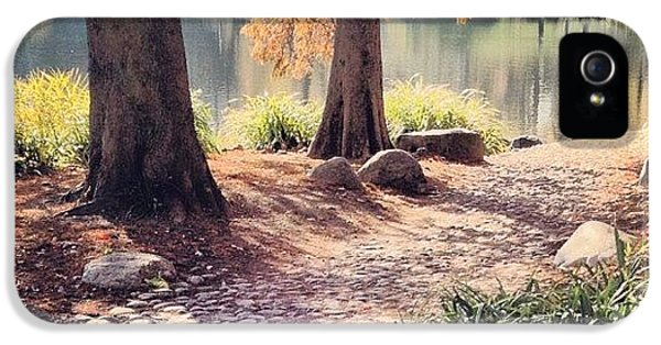 City iPhone 5 Case - Central Park Early Morning by Randy Lemoine