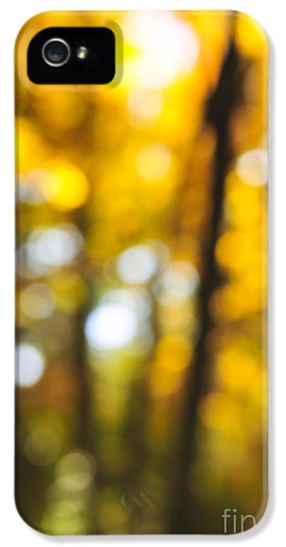 Fall Abstract IPhone 5 Case by Elena Elisseeva