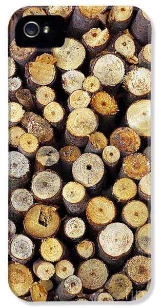 Firewood IPhone 5 Case by Carlos Caetano