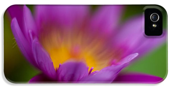 Glorious Lily IPhone 5 Case by Mike Reid