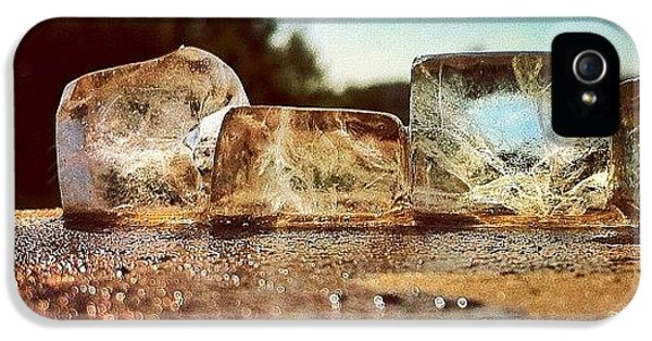 Sunny iPhone 5 Case - Ice by Samuel Gunnell