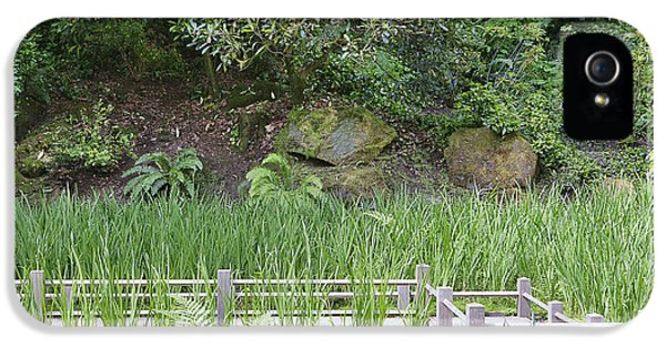 Good Condition iPhone 5 Cases - Iris Grow In Koi Pond Around The Zig iPhone 5 Case by Douglas Orton