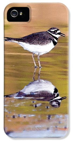 Killdeer Reflection IPhone 5 Case by Betty LaRue