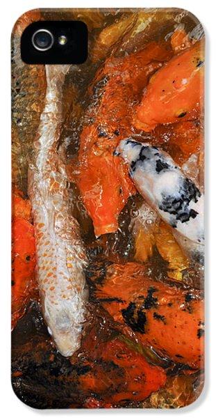 Breathe iPhone 5 Case - Koi Pond IIi by Joe Carini - Printscapes