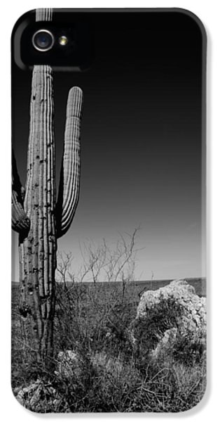 Lone Saguaro IPhone 5 Case by Chad Dutson