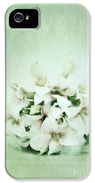 Mint Green IPhone 5 Case by Priska Wettstein