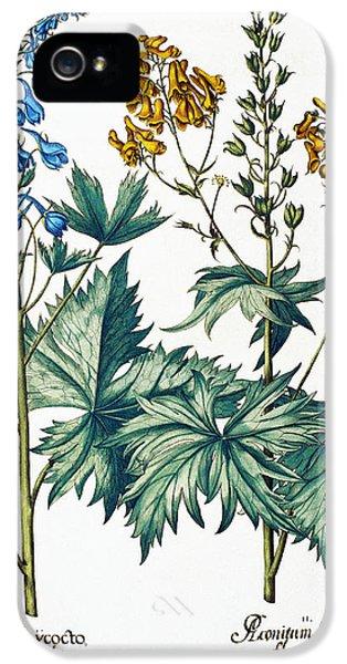 Monkshead Flowers IPhone 5 Case