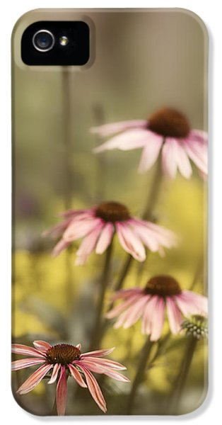 Morning In The Garden IPhone 5 Case