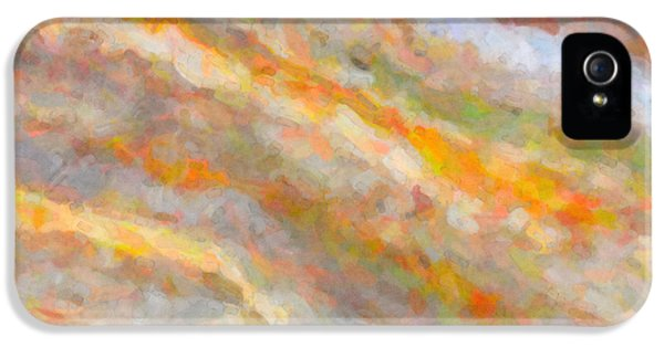 Nature Abstract I IPhone 5 Case by Clarence Holmes