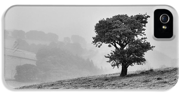 IPhone 5 Case featuring the photograph Oak Tree In The Mist. by Clare Bambers