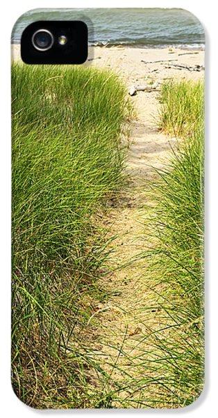 Path To Beach IPhone 5 Case