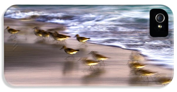 Sandpiper iPhone 5 Case - Playing Pipers by Betsy Knapp