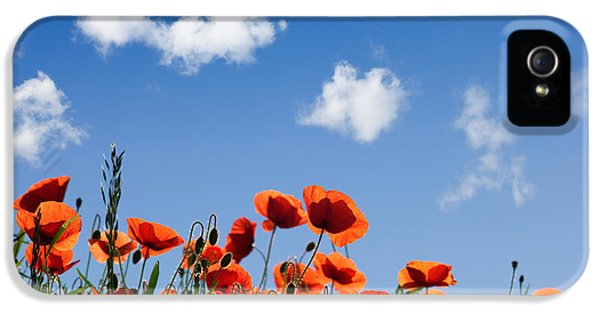 Poppy Flowers 05 IPhone 5 Case