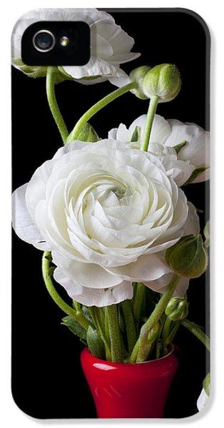Ranunculus In Red Vase IPhone 5 Case
