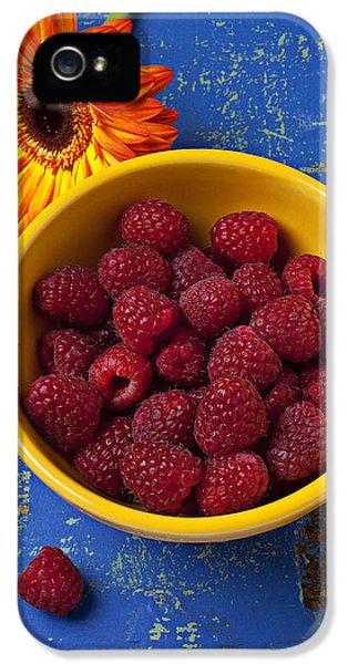Raspberries In Yellow Bowl IPhone 5 Case