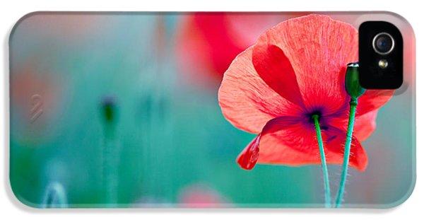 Red Corn Poppy Flowers 04 IPhone 5 Case by Nailia Schwarz