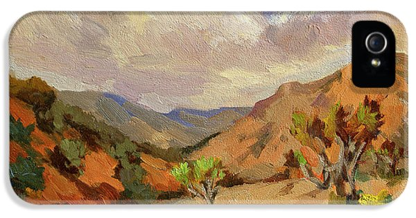 Spring At Joshua Tree IPhone 5 Case