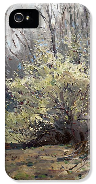 Spring Blossom  IPhone 5 Case by Ylli Haruni
