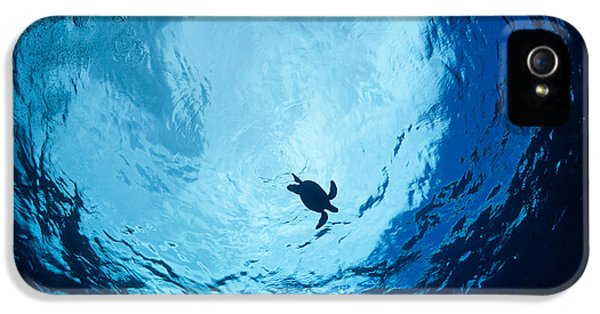 Breathe iPhone 5 Case - Surfacing Sea Turtle by Dave Fleetham - Printscapes