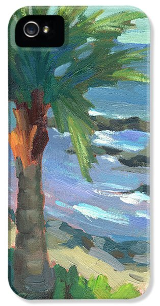 Indian Ocean iPhone 5 Cases - Turquoise Water iPhone 5 Case by Diane McClary