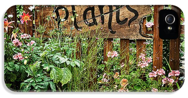 Garden iPhone 5 Case - Wooden Plant Sign In Flowers by Simon Bratt Photography LRPS